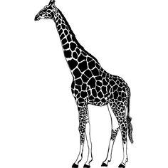 """Giraffe Small Style #2 Vinyl Wall Art Decal 20""""x 33"""" $31.99 Horse Wall Decals, Animal Wall Decals, Vinyl Wall Art, Vinyl Decals, Ninja Gear, Giraffe, Elephant, Paper Cutting, Cute Animals"""