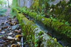 Water runnel (1) by KarlGercens.com, via Flickr