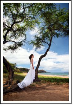 Natalie Brown Maui wedding photographer www.maui-weddingphotographer.net.  More info about Maui Hawaii weddings is at www.mauihawaii.org/wedding-honeymoon/hawaii-weddings.htm