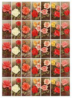 Printable Vintage Roses Digital Collage Sheet, Flower 1x2 inch Domino Images, Floral Clip Art, Valentine, Instant Download, Commercial use Valentine Day Crafts, Valentine Ideas, Valentines, Etsy Crafts, Art Crafts, Scrapbook Designs, Flower Images, Printable Vintage, Miniatures