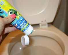 7 miraculous tricks to keep your toilet clean for longer, bathroom ideas, cleaning tips, Photo via Stephanie Binkies Briefcases