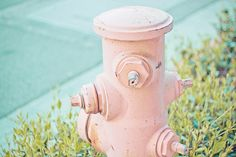 pink hydrant - must be a cool town