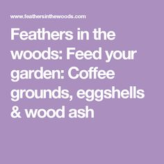 Feathers in the woods: Feed your garden: Coffee grounds, eggshells & wood ash