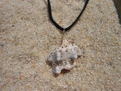 Kings Crown Conch Shell Necklace