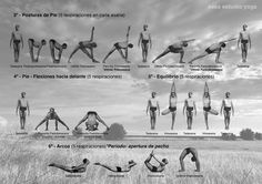 Ashtanga Vinyasa Yoga | Proyecto Yoga Unlimited