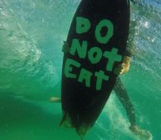 We post random dope stuff + some original surfing content.Although some of our photos are of pro surfers,most are of just regular free surfers,some that we meet on our travels that surf,like we. Kitesurfing, All Meme, Sup Surf, Surfs Up, Wakeboarding, Paddleboarding, Narnia, Funny Pictures, Random Pictures