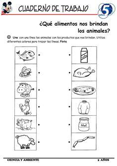 Science Worksheets, Tracing Worksheets, Worksheets For Kids, Free Preschool, Preschool Learning, Teaching, Bilingual Education, Baby Education, Activity Sheets