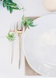 simple place setting, gold flatware, plant, white plate