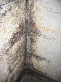 38 best basement waterproofing tips images basement remodeling rh pinterest com