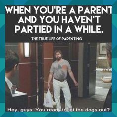 Hilarious, Funny, E Cards, Parenting, Relationship, Let It Be, Humor, Guys, Quotes