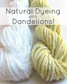Natural Dyeing with