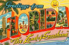 Vintage Florida postcard...been in love with the Sunshine State since childhood.  My older sister lived all around the central coastline in places like St. Petersburg, Sarasota, and Ft Myers with her family.  For years, that is where we went on vacation with my parents...to visit her.  Sometimes we'd all venture on down to Miami and Key West together....slj