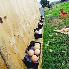Roll out nest boxes would be great! I would add some sort of housing around…
