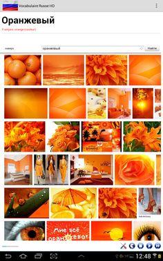 Vocabulaire Russe HD Articles, Orange