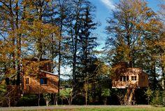 Baumhaushotel - Ferienhof und Baumhaushotel im Allgäu- Familie Bechteler in Betzigau, Oberallgäu, Allgäu, Ferien auf dem Bauernhof, Reitstall, Urlaub im Baumhaus, Baumhausurlaub, Ferien im Baumhaus, Baumhaushotel