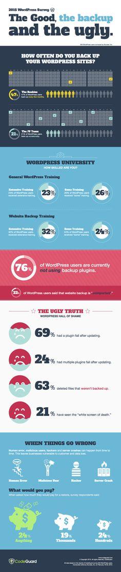 Wordpress-security-infographic