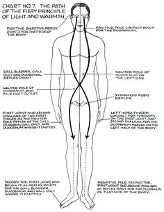 polarity therapy - Google Search