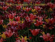 Wisdom Flowers