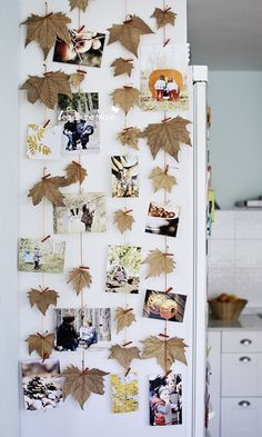 fall leaf and picture garlands on fridge