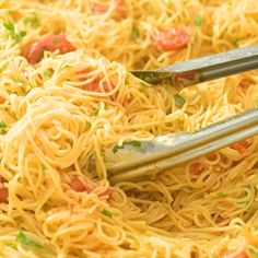 Dinner Recipes simple Easy Angel Hair Pasta This Angel Hair Pasta is made from cherry tomatoes, garlic and olive oil Angel Hair Pasta Recipes, Easy Pasta Recipes, Easy Dinner Recipes, Easy Meals, Angel Hair Shrimp Pasta, Recipes With Spaghetti Noodles, Lasagna Recipes, Tasty Videos, Food Videos