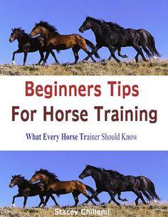 Beginners Tips For Horse Training