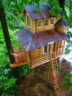 Love this! Tree house | World's Snaps