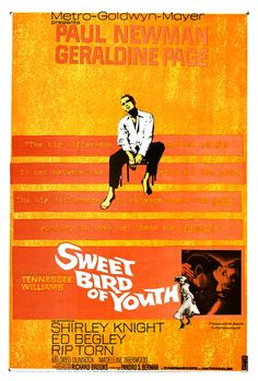 """Sweet Bird of Youth"" (1962), Paul Newman, Geraldine Page #ORANGE"