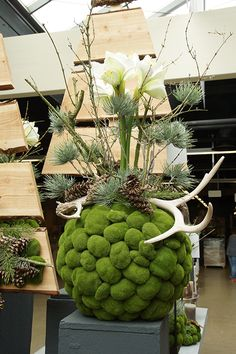 Christmas arrangement ideas & Totensonntag - Beautiful For Decoration Deco Floral, Arte Floral, Christmas Time, Christmas Wreaths, Christmas Crafts, Christmas Ideas, Christmas Arrangements, Floral Arrangements, Moss Art