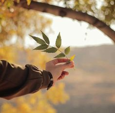 I love nature Hand Photography, Creative Photography, Portrait Photography, Girly Pictures, Beautiful Pictures, Beautiful Hands, Instagram Editing Apps, Profile Pictures Instagram, Hijab Cartoon