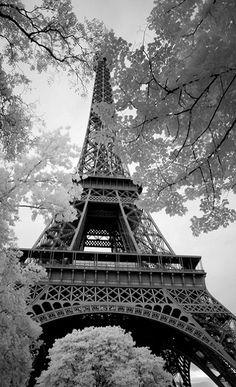 Paris, France / Black and White Photography / Tour Eiffel Paris Torre Eiffel, Paris Eiffel Tower, Black And White Photo Wall, Black And White Photography, Paris Black And White, Beautiful Paris, Beautiful World, Paris Amor, Pray For Paris