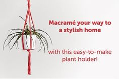 Chic Hanging DIY Plant Holder