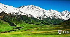 Xinjiang  via TW by (@XinjiangCuisine)