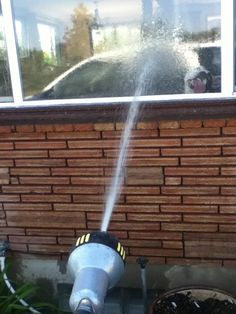 fantastic My friend was watering and noticed something strange Check more at http://weirdhood.com/fun/funny-pictures-week-30-march-2015/