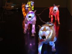 Random Material-Illuminated Animals