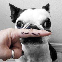 Haha cuteness!!