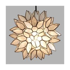 Cost Plus World Market Small Capiz Lotus Pendant Shade ($70) ❤ liked on Polyvore featuring home, lighting, ceiling lights, white ceiling lights, white lamp, seashell lamps, sea shell lamp and capiz shell hanging lamp