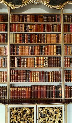 A beautiful bookcase at Wrest Park, England