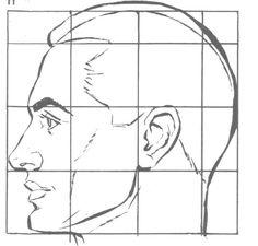 cara perfil