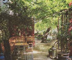 1000things.at präsentiert euch traumhafte Gastgärten und grüne Oasen mitten in Wien. Genießt den Frühling!
