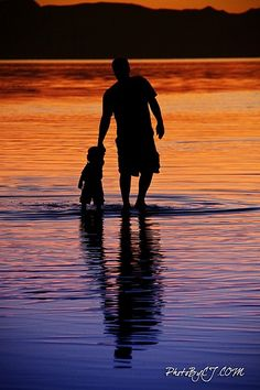I love silhouette photos and this one is remarkable! What a great family memory captured!