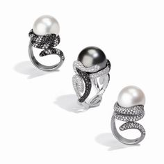 Eden Collection: South Sea Tahitian pearl, white-black diamond rings by Utopia
