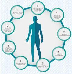 La ozonoterapia es un tratamiento médico alternativo que pretende la saturación de oxígeno en el organismo, actúa como antioxidante, inmunomodulador, mejora