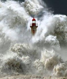 Lighthouse in a storm ~ Guy Harvey