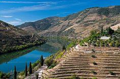 Quinta dos Malvedos, Douro #douro #douroriver #dourovalley #ilovedouro #dourovinhateiro #dourolovers #dourowine #portugal #portugal_lovers #portugal_de_sonho #portugal_em_fotos #portugaldenorteasul #igersportugal #ig_portugal #wine #vinho #travel #viagem #turismo #instatravel #visitportugal #worldheritage #worldheritagesite #patrimoniounesco #patrimoniomundial #patrimoniocultural #unesco #unescoworldheritage