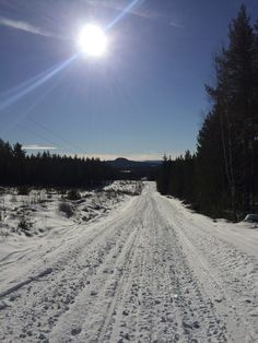 New #hobohBlog online! Exploring Ljusdal
