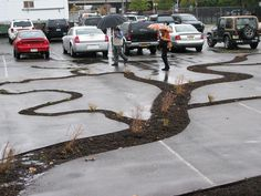 <p>Dendritic Decay, a project along the Delaware River in Philadelphia is a visual reminder that pavement doesn't have to be permanent, and, if given a chance, plant roots will break down concrete and asphalt.</p>