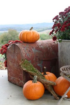 Vintage Mailbox Finds It's Home On The Porch For Fall Decorating Fruits Decoration, Vintage Mailbox, Autumn Cozy, Autumn Fall, Early Autumn, Autumn Leaves, Autumn Decorating, Decorating Ideas, Happy Fall Y'all