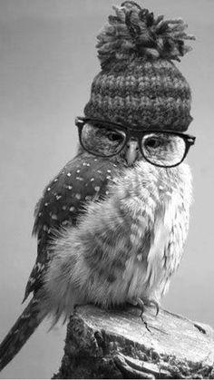 Thanks for the hat, Aunt Martha. #OpticsOwl OpticsOwl.com