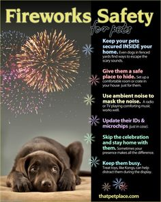 It's almost time for your dog's least favorite holiday: The 4th of July. Most dogs don't like fireworks and noise that comes with the Independence Day holiday. Here are some great tips from a recent infographic roundup. 1. 5 Ways to Keep Your Dog Safe on the Fourth of July   2. More pets get …
