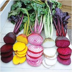 Beet Seeds - 3 Beets - Vegetable Garden Seeds - from S. Winter Vegetables, Growing Vegetables, Fruit And Veg, Fruits And Vegetables, Carrot Seeds, Fruit Seeds, Seed Tape, Autumn Garden, Onions